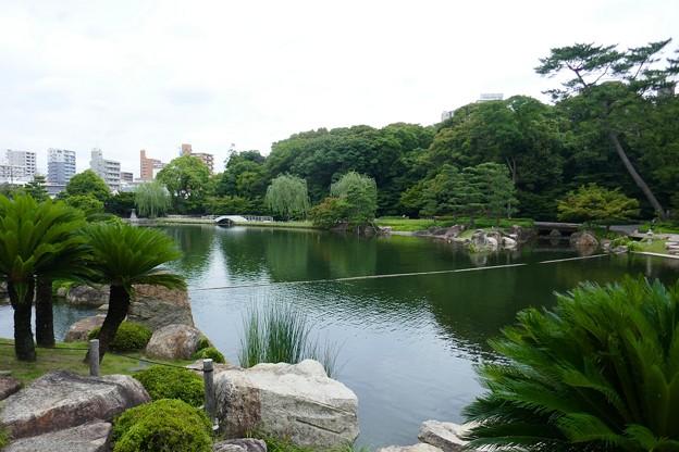 徳川園P1140578