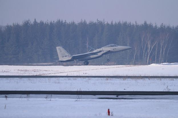 F-15J 873 201sq landing