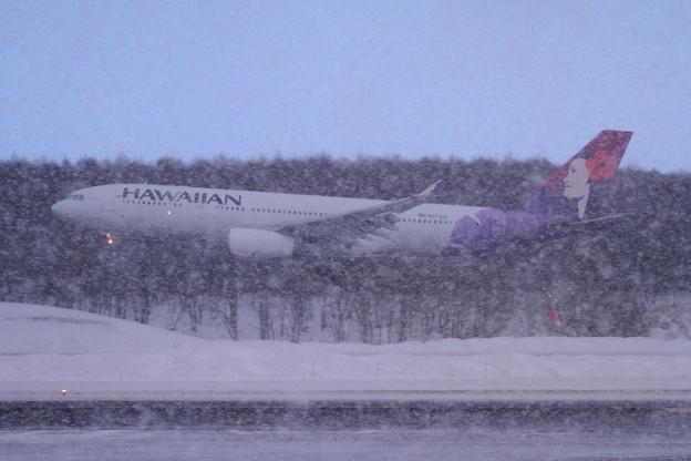 A330 Hawaiian441便 雪の中approach