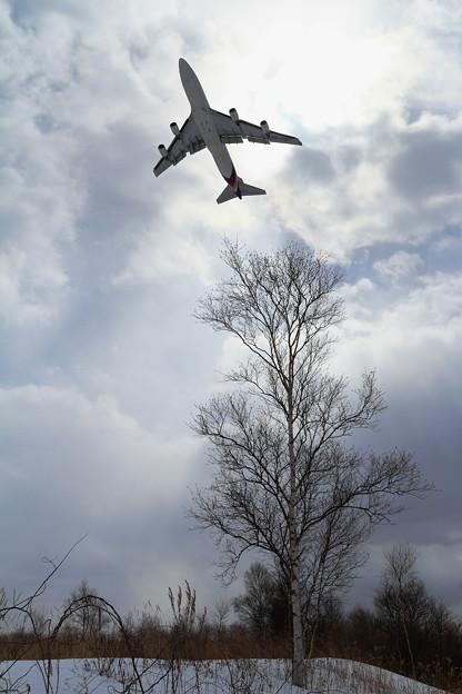 B747 THAI HS-TGP takeoff