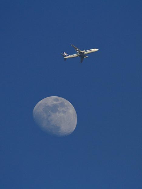 写真: B737 ANAと月