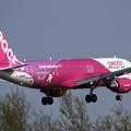 写真: A320 APJ ShopPeach online JA816P