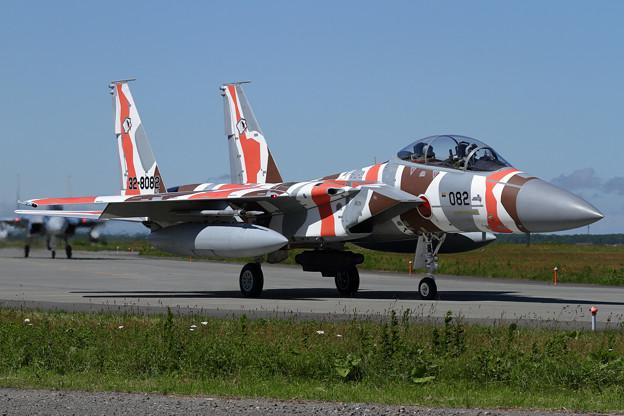 F-15DJ 082 Aggressor taxiing(2)
