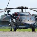 Photos: UH-60J 589 八雲分屯基地公開 (1)