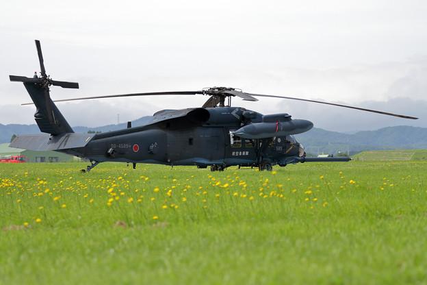 UH-60J 589 八雲分屯基地公開 (3)