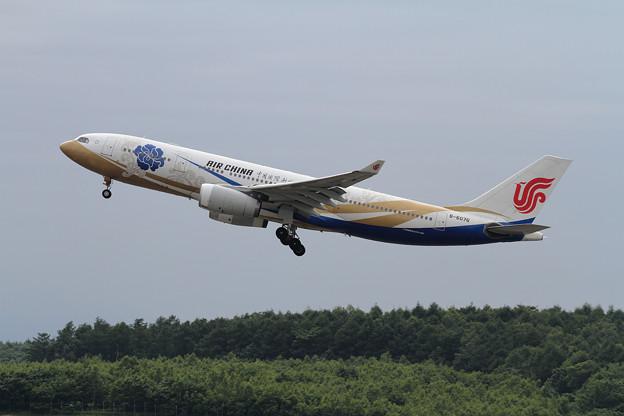 A330-200 Air China B-6076 (2)