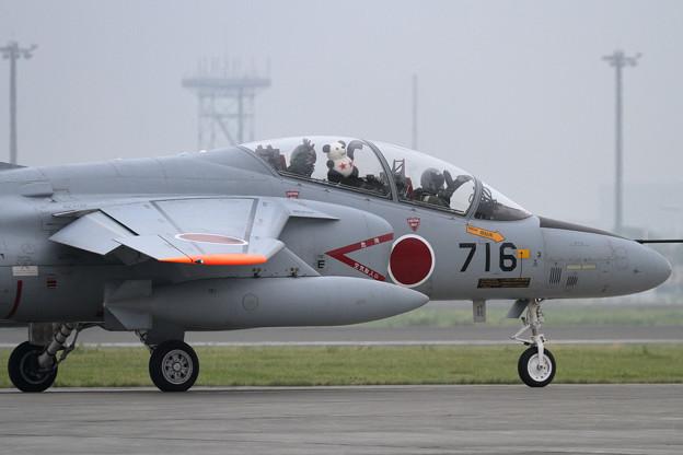 T-4 203sq機上のクマさん