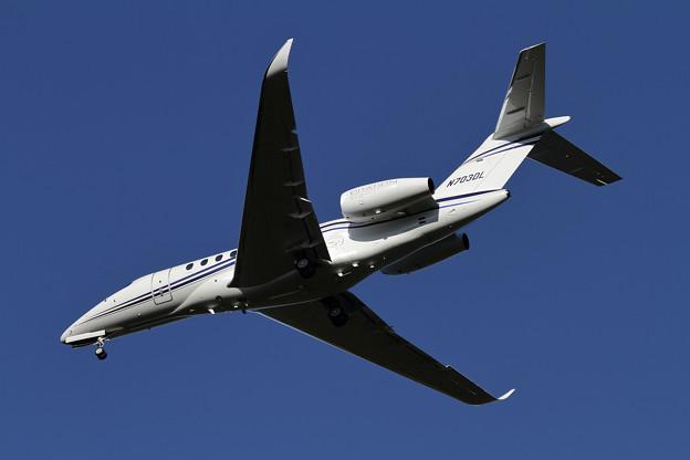 Cessna 700 Citation Longitude N703DL (1)