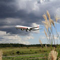 Photos: B777-300ER 80-1111 飛行訓練始まる(3)