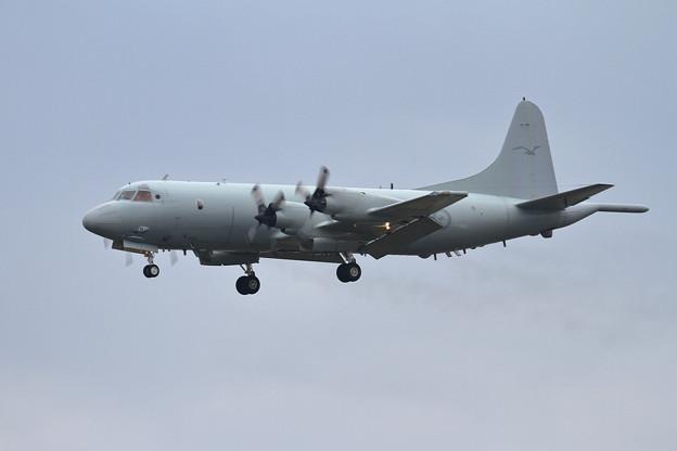 RAAF AP-3Cが台風避難で飛来(1)