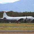 RAAF AP-3Cが台風避難で飛来(3)