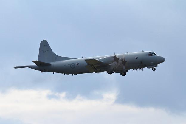 RAAF AP-3Cが台風避難で飛来(4)