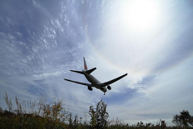 B777 JAL approach 秋空にハロ
