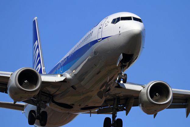 写真: B737 ANA JA52AN approach