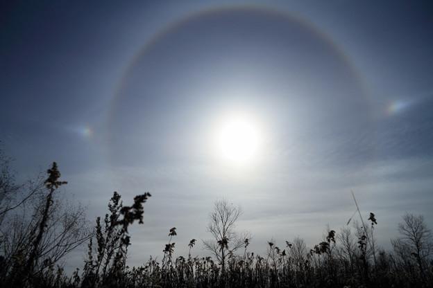 晩秋の空に幻日環 (1)