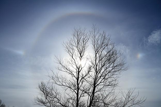 晩秋の空に幻日環 (2)