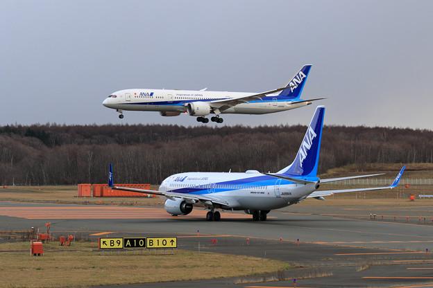 B737-800 ANA JA89ANとB787-9