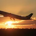 Photos: A330 EVA 夕陽の中takeoff