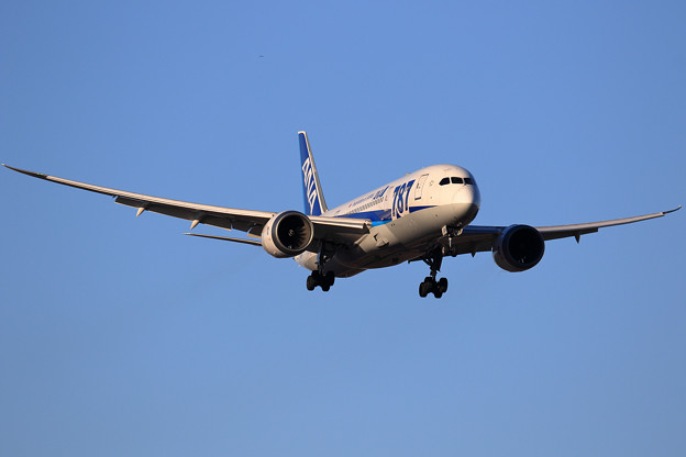 B787-8 ANA JA824A approach
