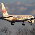 B767 JAL CelebrationExpress landing