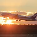 B787 ANA 夕陽の中takeoff