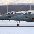 F-15J 201sq line up (2)