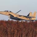 Photos: F-15DJ 077 201sq approach (1)