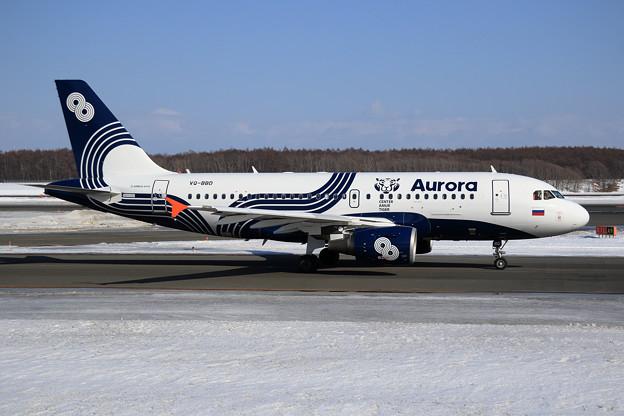 """A319 Aurora """"Amur Tiger Center"""" VQ-BBD"""