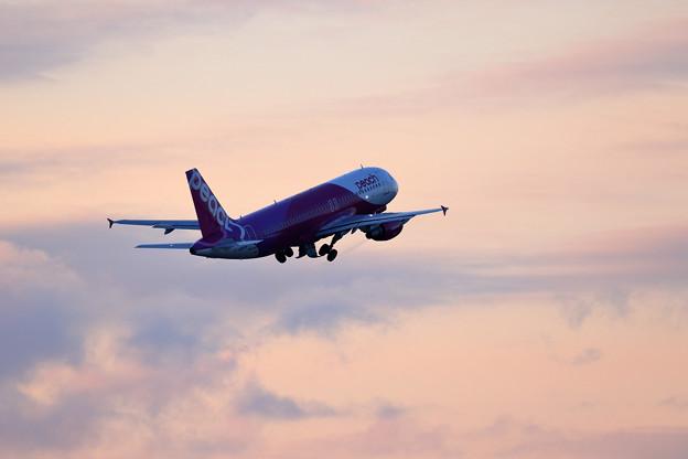 A320 Peach JA817P 夕空へ