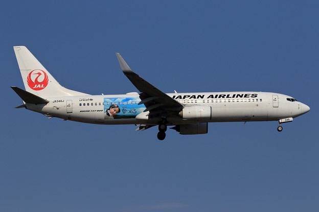 "Photos: Boeing737 JAL ""なつぞら"" JA346J approach"
