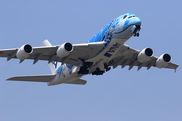 A380 ANA JA381Aがtakeoff (2)