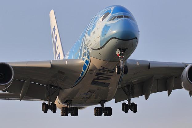 A380 ANA JA381Aが夕刻2度目の飛来