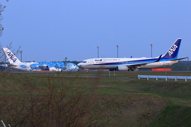 ANA B737とA380