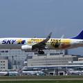 B737 SKY JA73NR landing