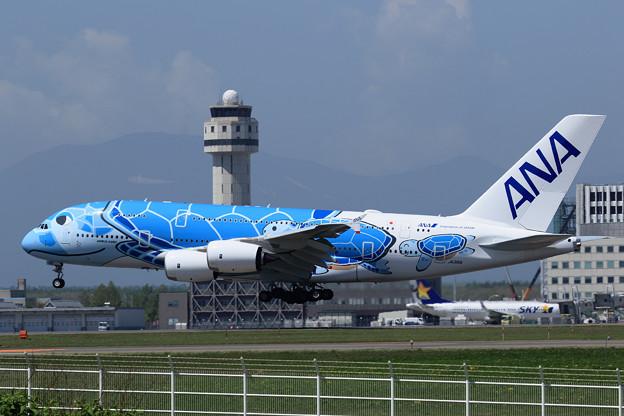 A380 ANA JA381A landing