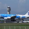 Photos: A380 ANA JA381A landing
