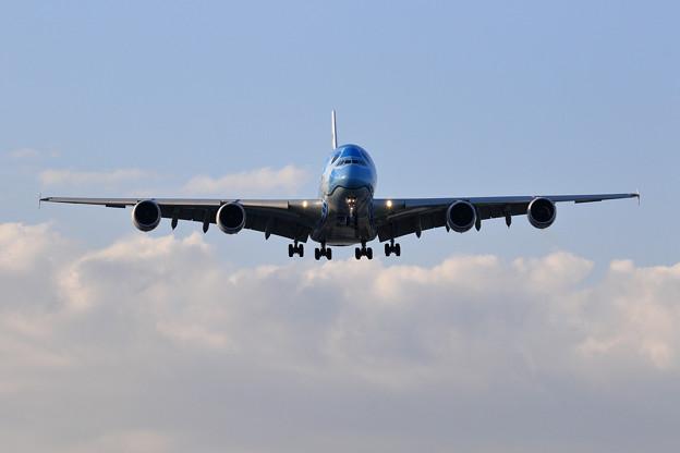 A380 ANA JA381A 午後の飛来 (1)