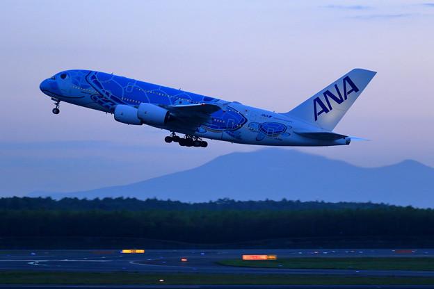 Photos: A380 ANA JA381A takeoff (2)