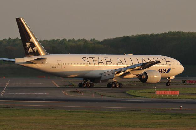 Boeing777 ANA 夕陽に照らされて