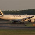 Photos: Boeing777 ANA 夕陽に照らされて