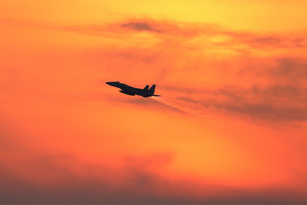 F-15J Sunset (2)