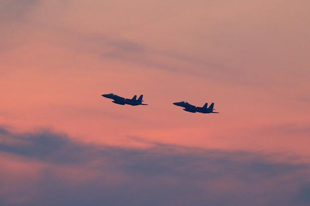 F-15J Sunset (4)