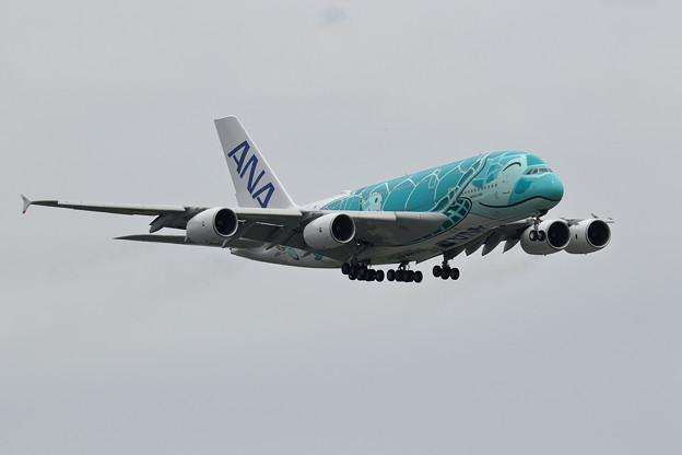 A380 ANA JA382A 飛来 (1)