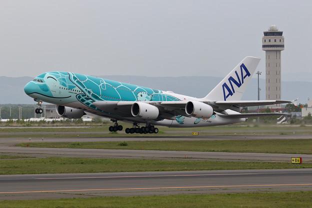 A380 ANA JA382A 飛来 (3)