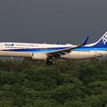 B737 ANA JA68AN approach
