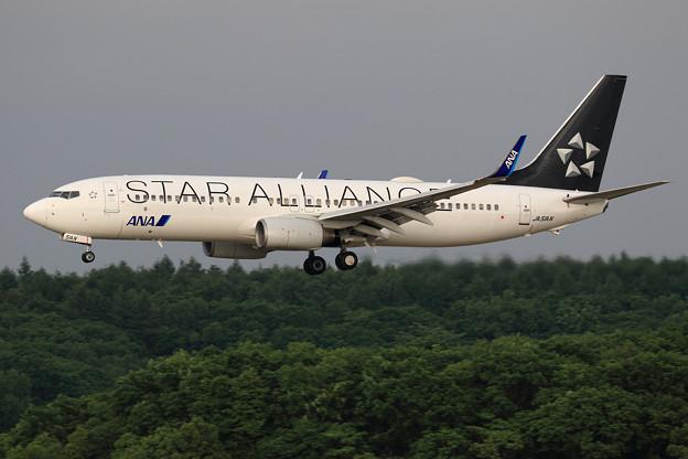Boeing737 ANA JA51AN approach