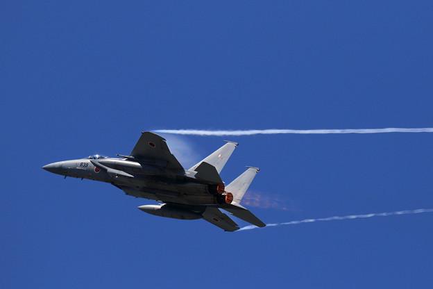 F-15J 2019機動予行 203sq (3)