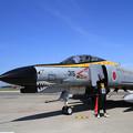 F-4EJ 8315 MSJ2019 301SQ F-4ファイナル特別塗装 (2)
