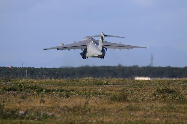 C-17A 00-0174 AK ANG 167WG PACAF 3WG (4)