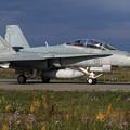 F/A-18B A21-114 2OCU RAAF(1)